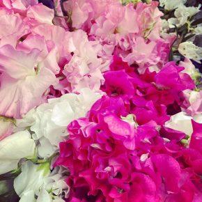florist-classes